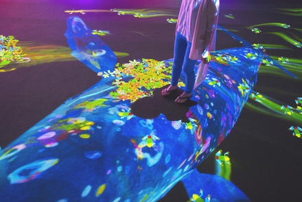 teamLab: Graffiti Nature–Still Mountains and Movable Lakes
